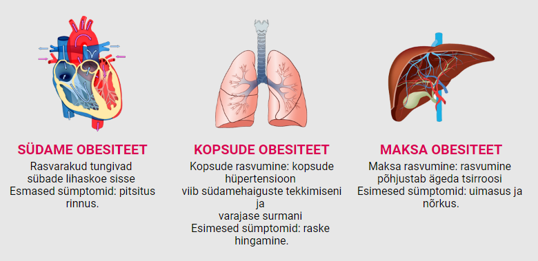 ultrametabolismo kasutusjuhend