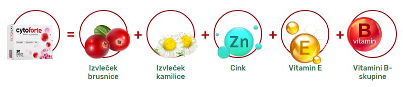 CytoForte v Ljubljani